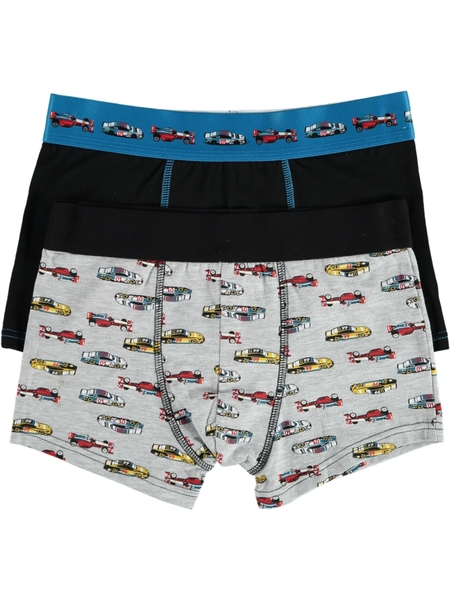 Boys 2 Pack Fashion Trunks