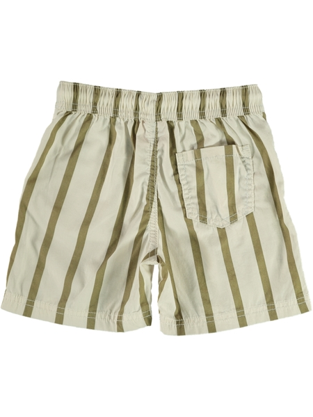 Toddler Boys Festival Short