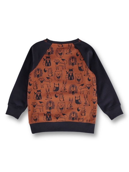 Toddler Boys Fleece Sweat Top